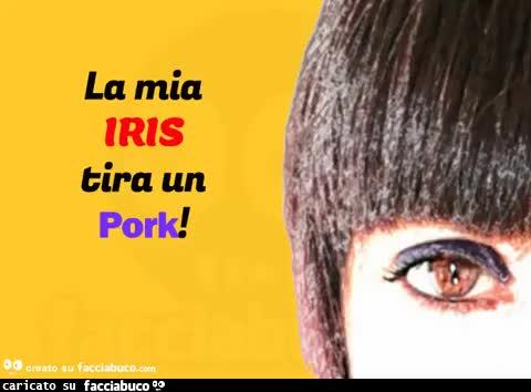Iris Band
